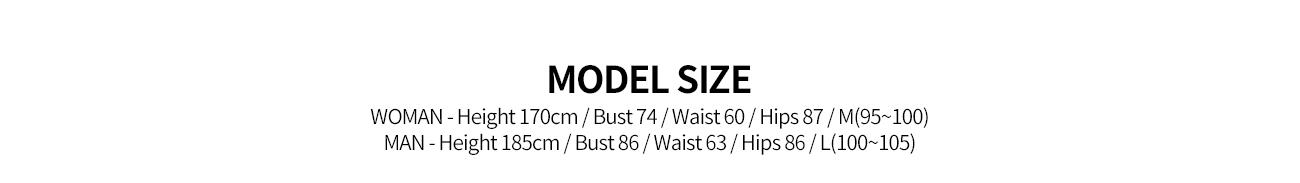 an00037_model.jpg