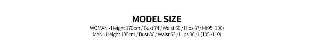 an00042_model.jpg